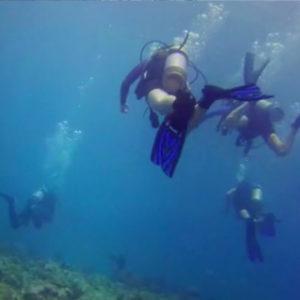 Sea_Dwellers