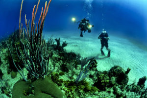 divers-photography