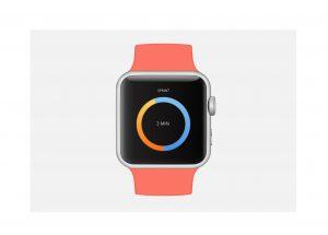 Apple Watch- UI Timer
